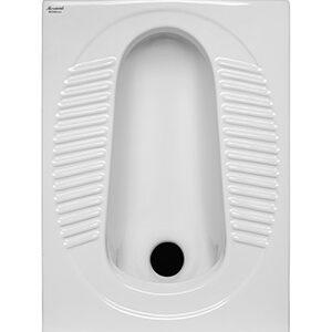 توالت زمین